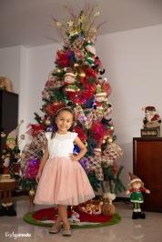 Sesión Navidad Carito Cuervo-4